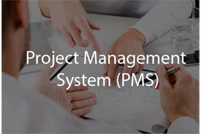 management software development company pakistan