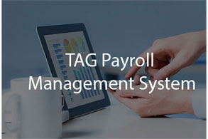 payroll software application development