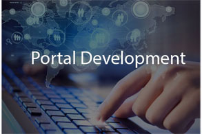 portal software company pakistan